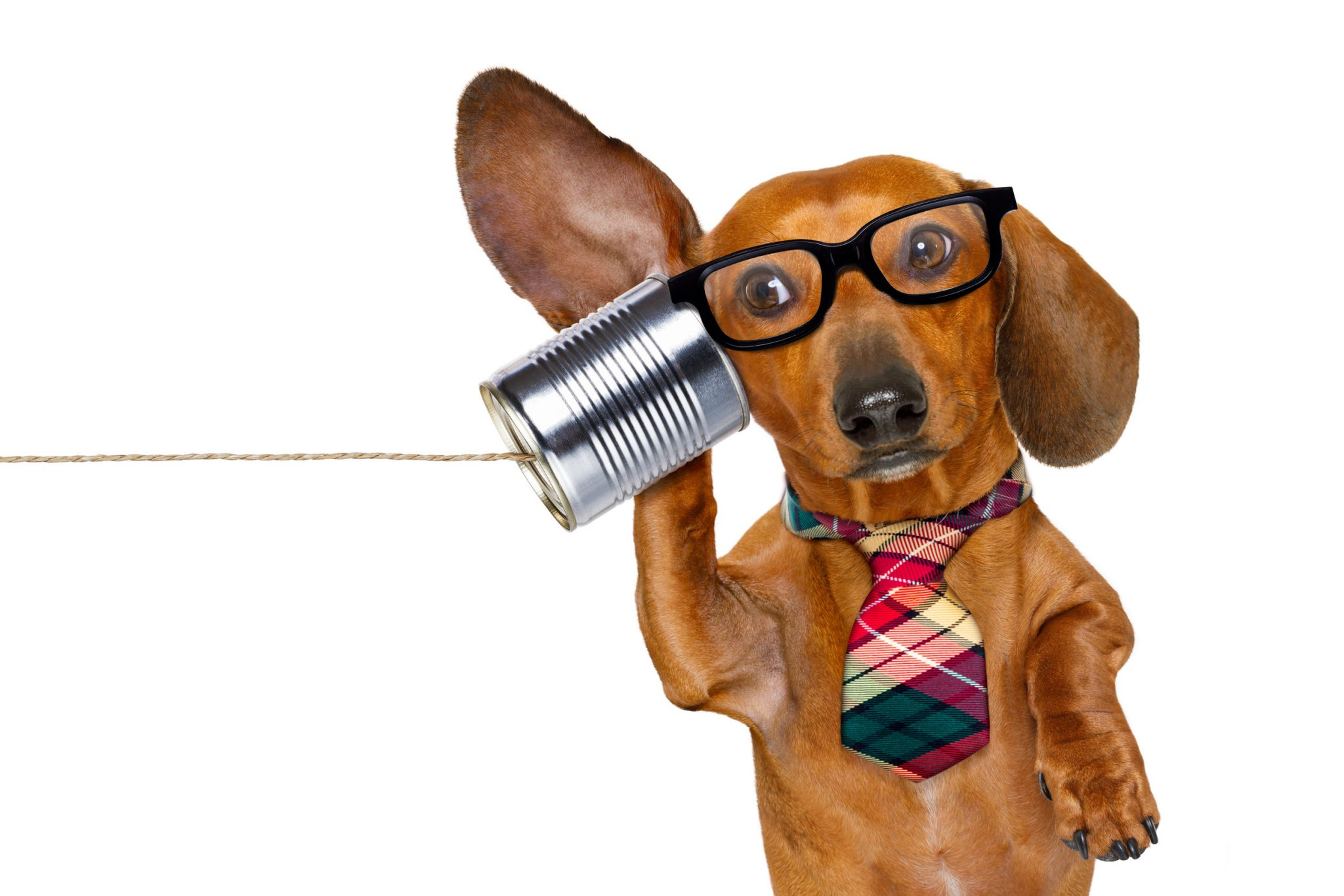 4 Simple ways to improve internal communication within your business image